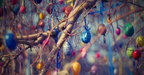art blur branches 210217