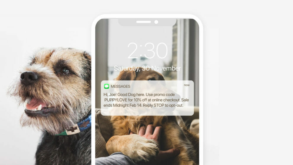 Marsello-Good-Dog-SMS-Campaign