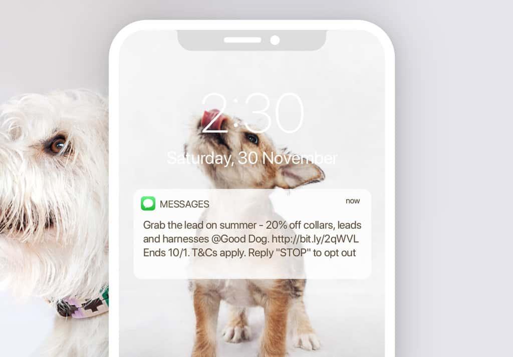 Marsello-Good-Dog-SMS-Campaign-Promo