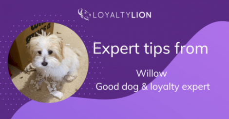 calling-all-pet-suppliers!-turn-first-time-shoppers-into-loyal-customers-with-these-top-tips