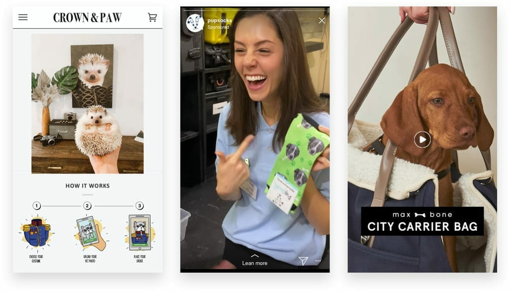 Ecommerce Pet Industry Marketing Examples