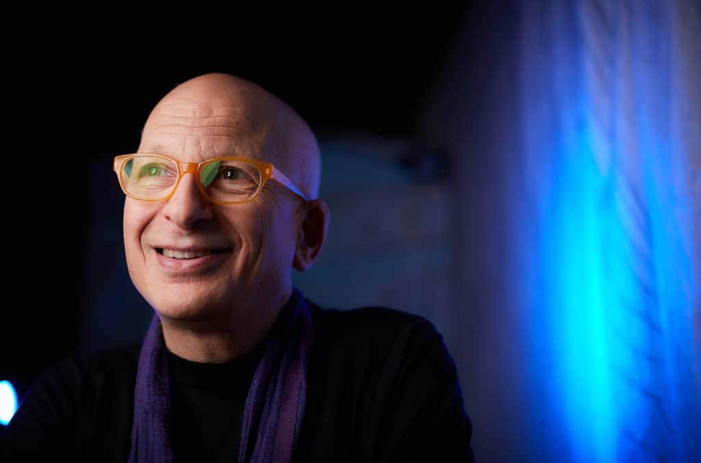 Seth Godin says new leaders can emerge in the face of crisis.