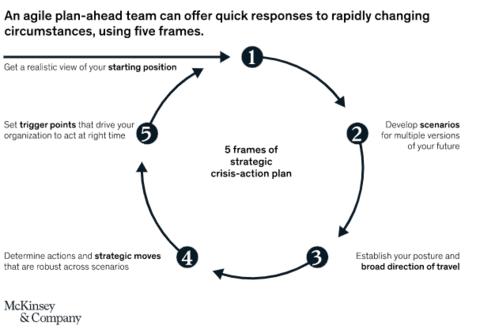 5 Frames of strategic crisis-action plan- McKinsey & Company
