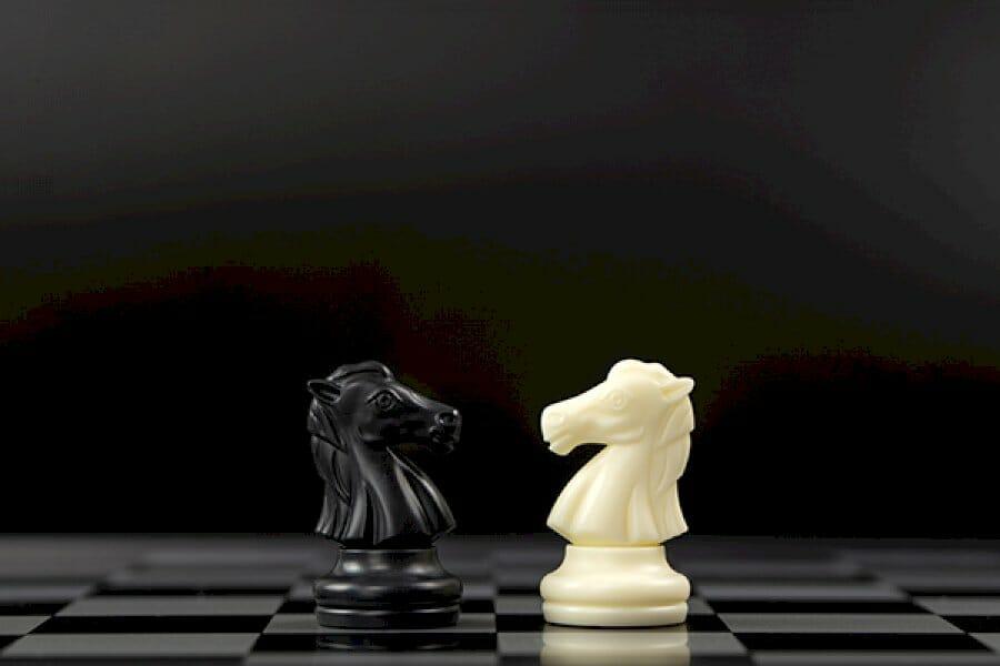 ambassador-programs-vs-influencer-programs-–-which-model-makes-sense-for-your-brand