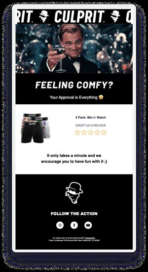 Culprit Underwear Email