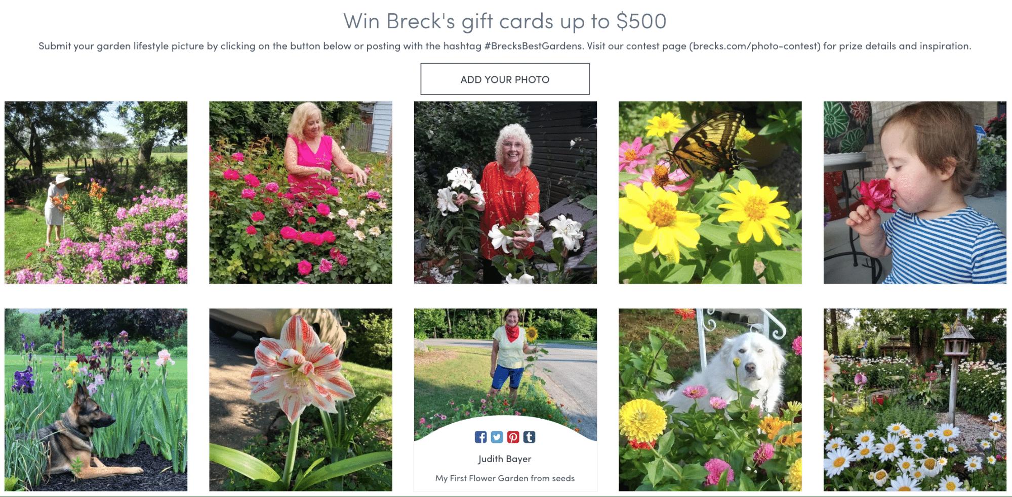 Breck's Gardening Contest