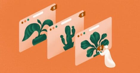 fronds-with-benefits:-a-beginner's-guide-to-selling-plants-online